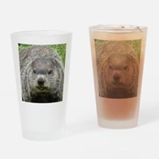Groundhog Eating Drinking Glass