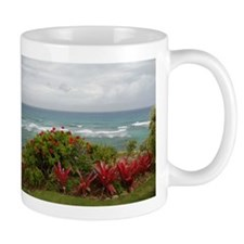Hawaiian Coastline Mug
