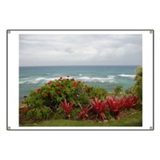 Hawaiian Coastline Banner