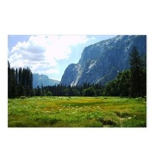 Yosemite Meadow Postcards (Package of 8)
