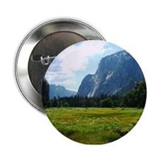 "Yosemite Meadow 2.25"" Button"
