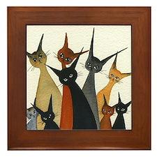 Irvine Stray Cats