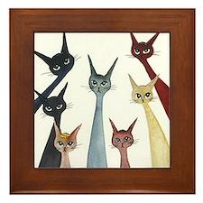 Aroostook Stray Cats