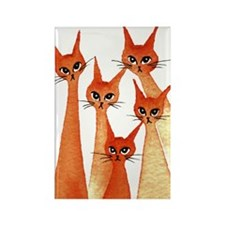 Adelaide Stray Cats Magnet