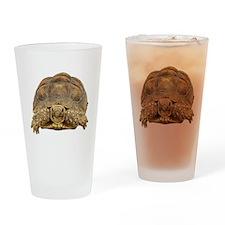 Tortoise Photo Drinking Glass