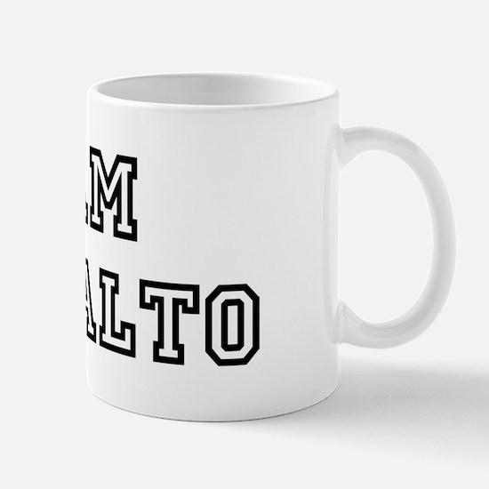 Team Palo Alto Mug