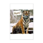 Tiger Meow Mini Poster Print