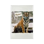 Tiger Meow Rectangle Magnet (10 pack)