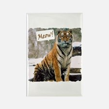 Tiger Meow Rectangle Magnet