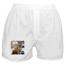 Go Tigers, Go! Boxer Shorts