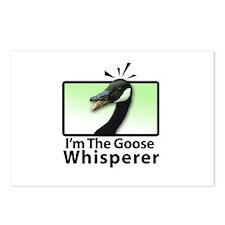 I'm the Goose Whisperer Postcards (Package of 8)