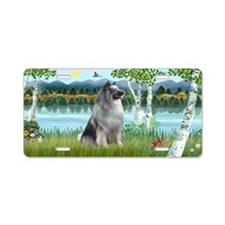 Birches - Keeshond Aluminum License Plate