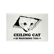 Ceiling Cat Rectangle Magnet