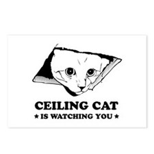 Ceiling Cat Postcards (Package of 8)