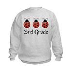 3rd Grade School Ladybug Kids Sweatshirt