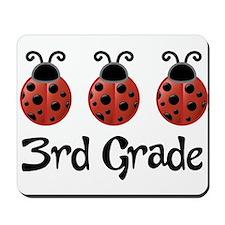 3rd Grade School Ladybug Mousepad