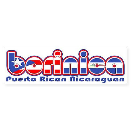 BoriNica Sticker (Bumper)