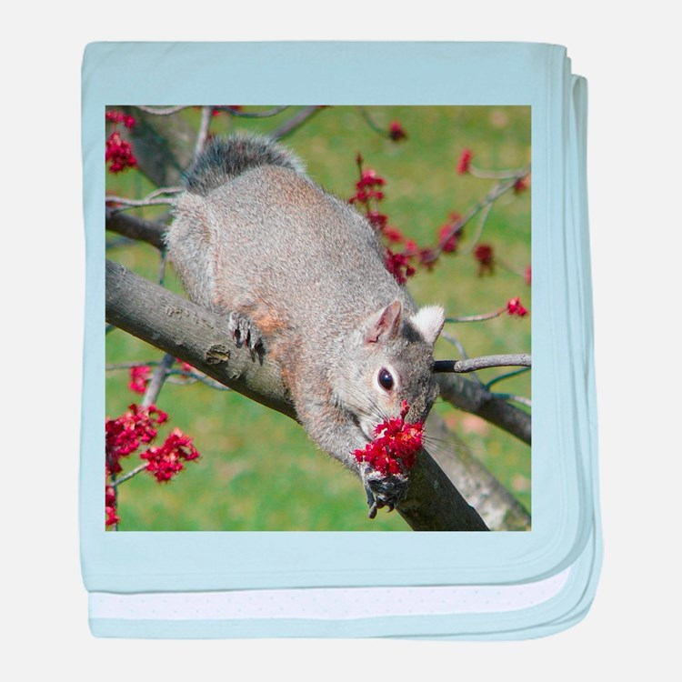 Squirrel with Roses? baby blanket