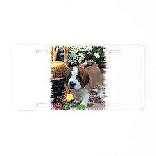 Saint Bernard Puppy Aluminum License Plate