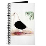 Saddle Homing Pigeon Journal