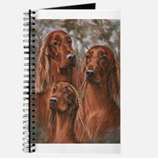 Irish Setter Journal