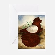 Red White Pigeon Greeting Card