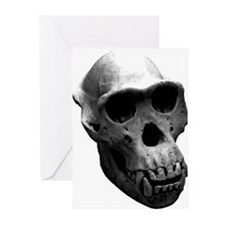 Chimpanzee Skull Greeting Cards (Pk of 10)