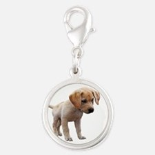 Cute Lab Puppy Eyeing Blue Butterfly Charms