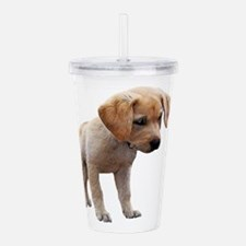 Cute Lab Puppy Eyeing Acrylic Double-wall Tumbler