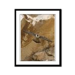 Untamed Spirit 3 Framed Panel Print