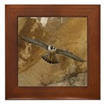 Untamed Spirit 3 Framed Tile