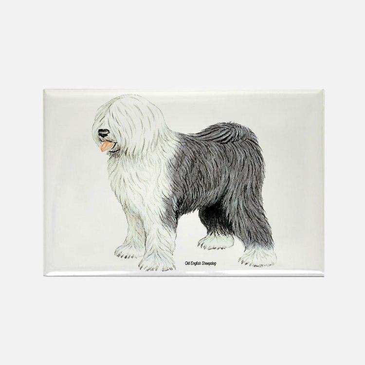 Old English Sheepdog Rectangle Magnet (10 pack)