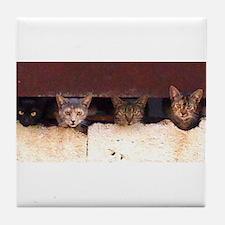 City Cats Tile Coaster