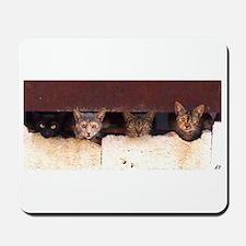 Stray Cats Mousepad