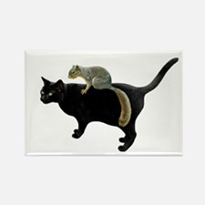 Squirrel on Cat Rectangle Magnet