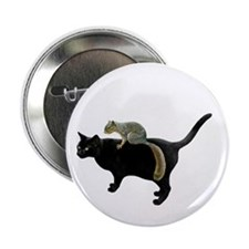 "Squirrel on Cat 2.25"" Button"