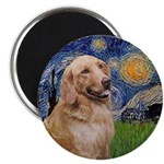 Starry / Golden B1A Magnet