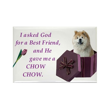 Chow Chow (Tan,White) Rectangle Magnet