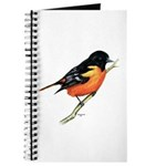 Baltimore Oriole Journal