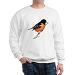 Baltimore Oriole Sweatshirt