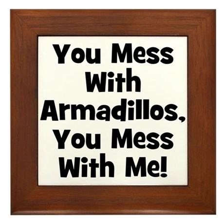 You Mess With Armadillos, You Framed Tile