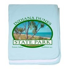 Indiana Dunes State Park baby blanket