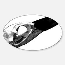 Penguin Skull Oval Decal