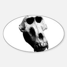 Baboon Skull Oval Decal