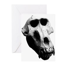 Baboon Skull Greeting Cards (Pk of 10)