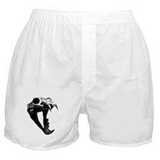 Lion Skull Boxer Shorts