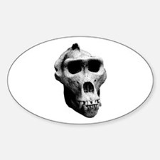 Lowland Gorilla Skull Oval Decal