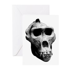 Lowland Gorilla Skull Greeting Cards (Pk of 10