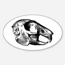 Rabbit Skull Oval Decal