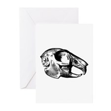 Rabbit Skull Greeting Cards (Pk of 10)